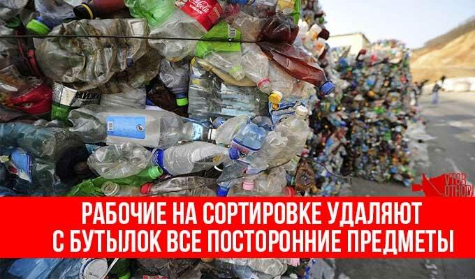 Треть от общего числа бытовых отходов составляют пластиковые бутылки