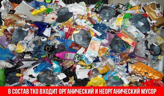Твердые коммунальные отходы доклад 6142
